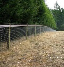 mesh horse fence